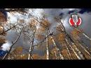 ДДТ - Что такое осень караоке