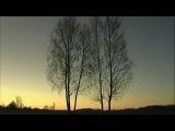Евгений Евтушенко-Идут белые снеги, поёт Гелена Великанова
