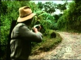 Eddy Grant - Romancing The Stone (HQ)