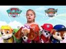 Мягкие Игрушки Щенячий Патруль Гонщик,Скай,Крепыш,Зума,Рокки и Маршал.Plush Toys Paw Pat...