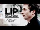 Lip Gallagher Wait