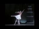 Royal Ballet - балет Prince of the Pagodas,Солисты:Johnathan Cope, Darcey Bussell