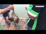 Рыбалка, которая просто взорвала интернет.