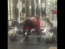 Рей Уильямс тянет 342 кг на 2 повтора без экипировки!