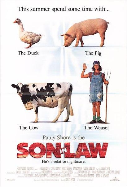 Зять (Зятек) / Son in Law (1993)