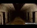 wap.neoza.ru_a7881baf43b8c137ad98a5ab7996fd7f