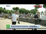 Быдло ВДВшник ударил пропагандона НТВ