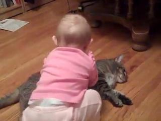 До_чего-же_огромно_терпение_у_животного____The_most_patient_and_docile_cat_ever!Вот_это_ВИДЕО#33;170