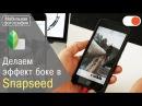 Как достичь эффекта боке в Snapseed - Уроки мобильной фотографии