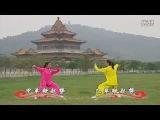 Китайская программа по Ян ши Тайцзи цюань