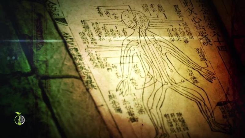 Искусство Внешней Алхимии. Часть 3. Возможно ли изменение ДНК-