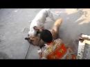 Алабай выдаваемый за Дога Аргентино против Немецкая овчарка 18 собачьи бои