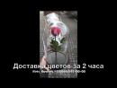 Доставка цветов Миргород