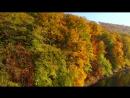 Золота осінь. Невицький замок. Закарпаття. Аерозйомка