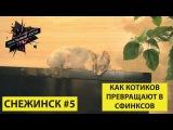 Снежинск #5   Как котиков превращают в сфинксов