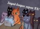 Сборник Приколов Коты- Воители|1 часть
