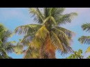 La playa Del Valle Дикий пляж Доминиканы, Samana, Dominican Republic