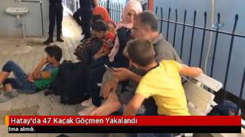 Hatayda 47 Kaçak Göçmen Yakalandı