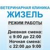 """Тосно Ветеринарная клиника - Зоомагазин """"Жизель"""""""