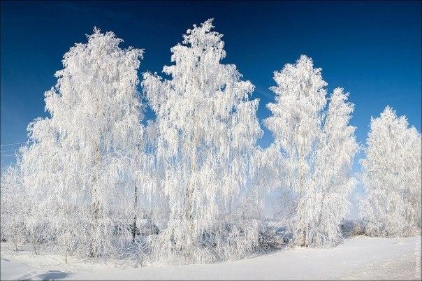 Зима – это такое время