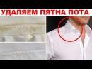 Как убрать желтые пятна пота на белой одежде Понадобится ВСЕГО ЛИШЬ ОДИН…