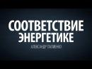 Соответствие энергетике Александр Палиенко