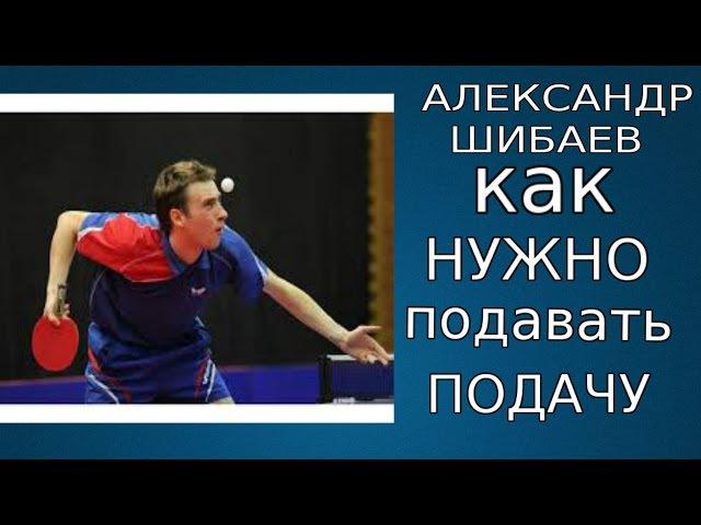 Секретная информация о подачах в настольном теннисе от Александра Шибаева