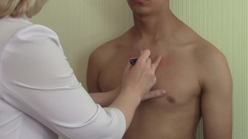 Исследование сердечно-сосудистой системы. Перкуссия сердца. Сердечная тупость. Пропедевтика внутренних болезней