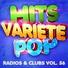 Hits Variété Pop - Habits (Stay High)