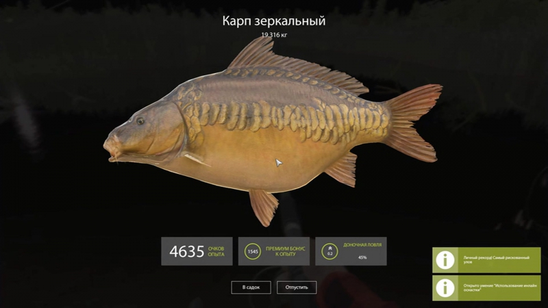 Русская рыбалка4.Карп зеркальный 19,316 кг на фидер 5 кг.