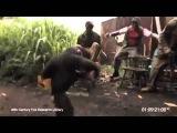 Macaco atirando com  fuzil AK 47