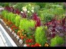 Яркая клумба на даче Как правильно подобрать растения по цвету