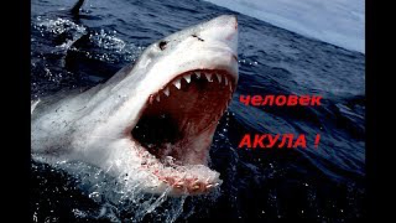 ШОК ! ЧЕЛОВЕК АКУЛА ! MAN-SHARK WITH STEEL JAWS . the strong man from Russia