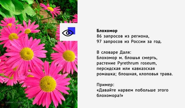2khnoEyibf8.jpg