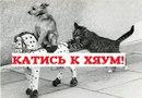 Алексей Суворов фото #5