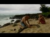 The Erotic Traveler - Episode 2 - секс порно porn pornhub sex xxx erotic full hd 1080 erotic эротика мамки milf трах
