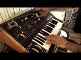 Moog Prodigy Synthesizer Wobble - LEGO mechanic macro control