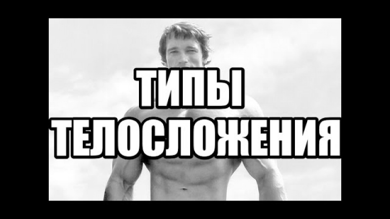 Типы Телосложения Эктоморф Мезоморф Эндоморф