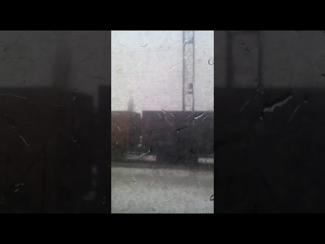 Потяг з вугіллям Донбасу їде в Росію, 23.02.2017
