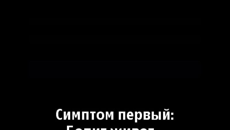 032 25-ый кадр 'МИСТЕР ПОЗИТИВ'