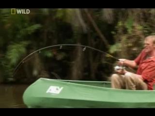 Охотник на пресноводных гигантов. 1 серия - Амазонский великан (2011)