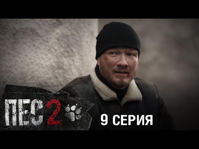 Сериал Пес - 2 сезон - 9 серия
