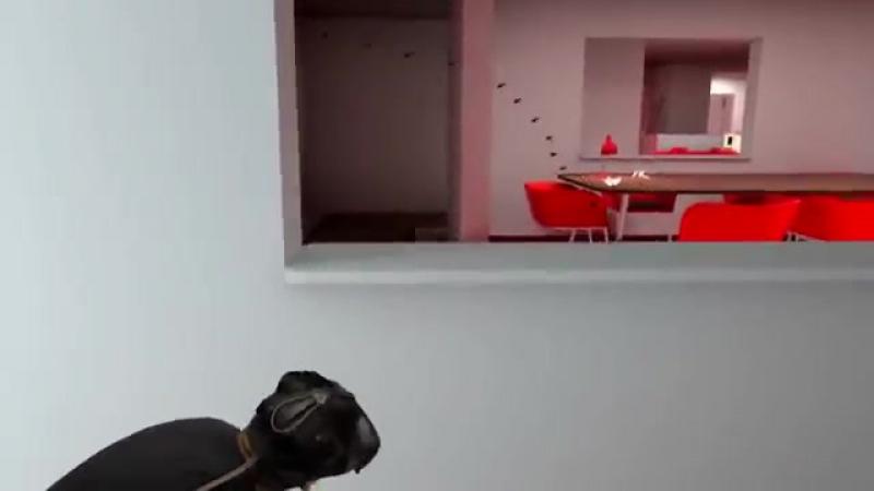 Возможности очков виртуальной реальности
