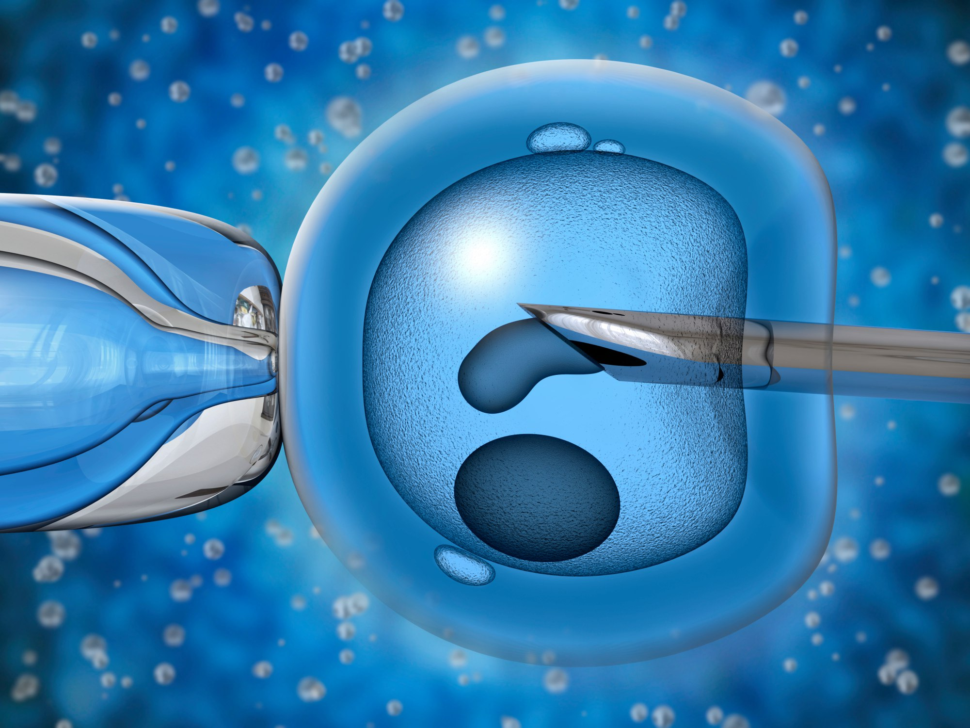 Статья Что такое экстракорпоральное оплодотворение?