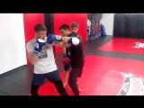 тренировка в группе ММА тренера Ширяева Александра в клубе единоборств Добрыня