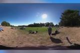 Реакция девочки на первое за 100 лет полное солнечное затмение в США.