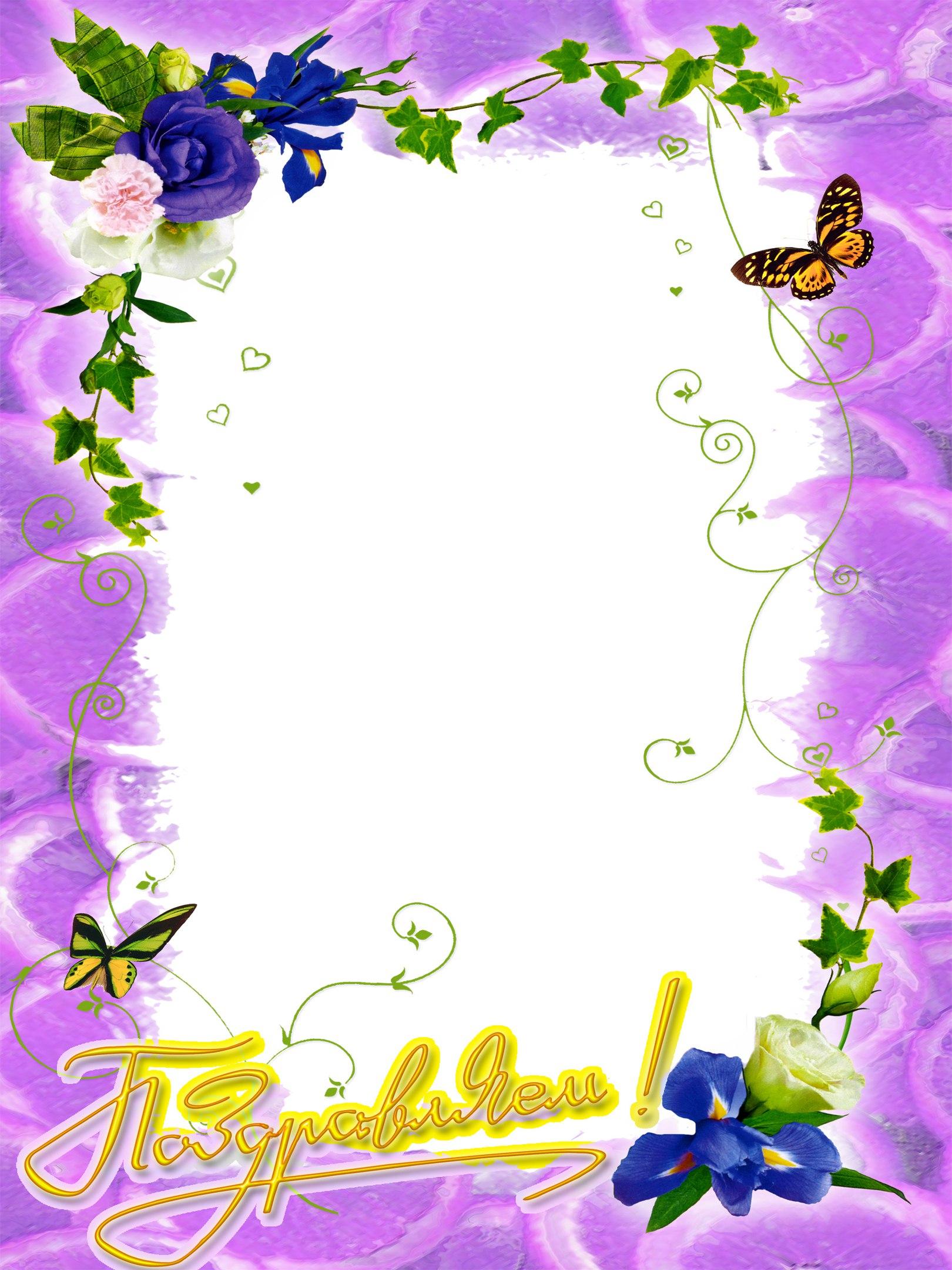 Класс бабочки, рамочки к поздравительным открыткам
