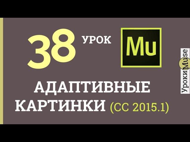 Adobe Muse уроки   38. Адаптивные картинки по ширине браузера