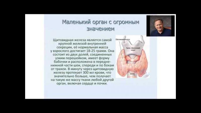 Благость Щитовидная железа