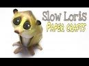 Slow Loris Paper Crafts tutorial !
